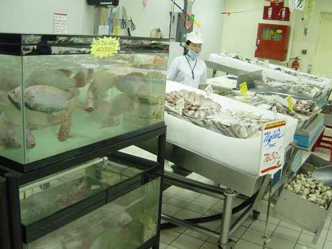 bic-fish-stall