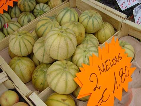 Stgaudensmelons